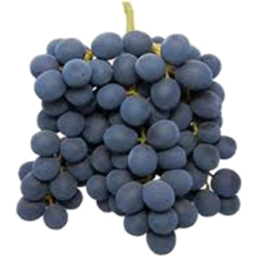 Photo of Grapes Black Muscattel