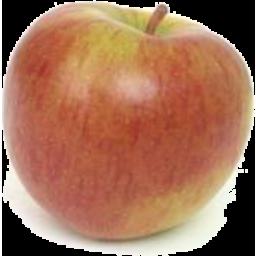 Photo of Apple Nz Braeburn Kg