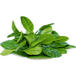 Photo of Herbs Lime Leaves