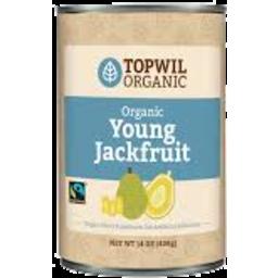 Photo of Topwil Jackfruit 400g