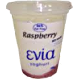 Photo of Evia Yoghurt Blueberrry 500gm