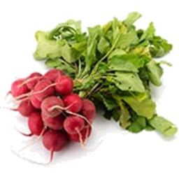 Photo of Radish Bunch Organic