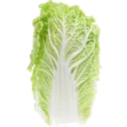 Photo of Wombok Cabbage Whole