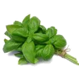 Photo of Basil Bunch Fresh