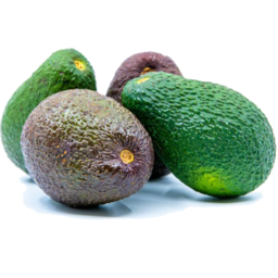 Photo of Hass Avocado Large