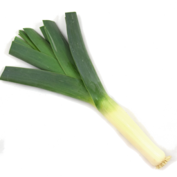 Photo of Leeks Single