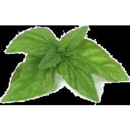 Photo of Herbs Basil