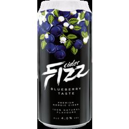 Photo of Fizz Blueberry Cider 500ml