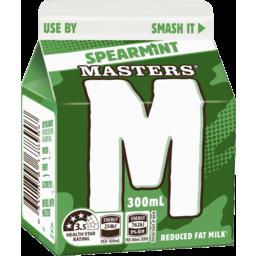 Photo of Masters Spearmint 300ml Carton