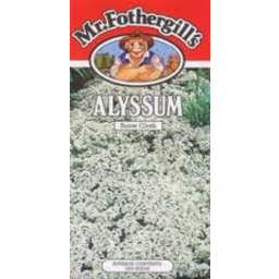 Photo of Mr Fothergill's Alyssum Aphrodite