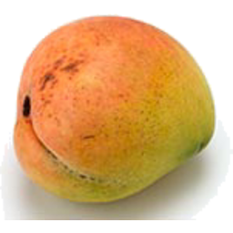 Photo of Mango Each