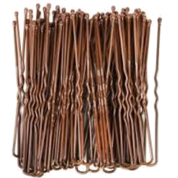 Photo of Bobbi Pins Brown
