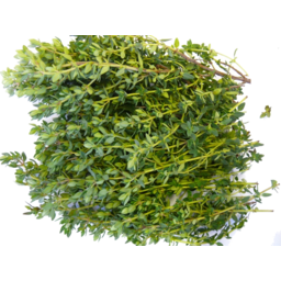 Photo of Herbs Brejul's S Thyme 10 G