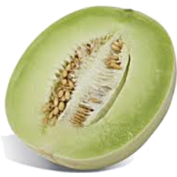 Photo of Melon Honeydew Half