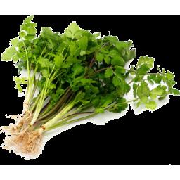 Photo of Herb - Coriander
