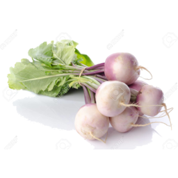 Photo of Turnips White Bunch