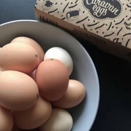Photo of Caravan Eggs800g