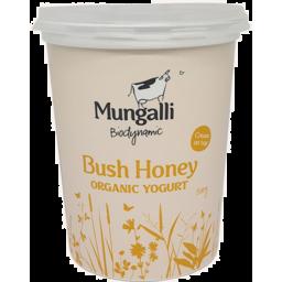 Photo of Mungalli Creek Yoghurt - Bush Honey