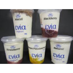Photo of Ev Skinny Yog 500gm