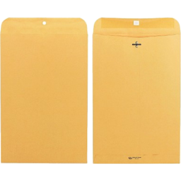 Photo of Brown Envelope 10in X 15in