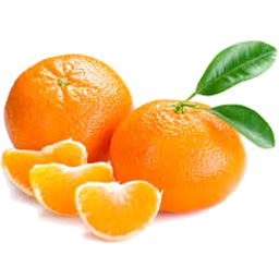 Photo of Mandarins