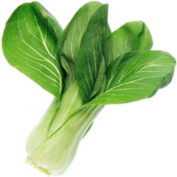 Photo of Bok Choy Baby