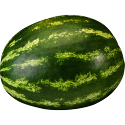 Photo of Watermelon Kg