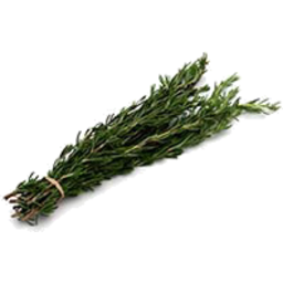 Photo of Herbs Fresh Rosemary