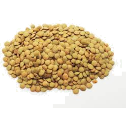 Photo of Lentils - Brown