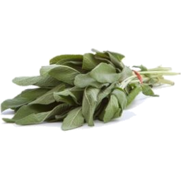 Photo of Barossa Fresh Sage 10g