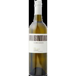 Photo of Galli Camelback Pinot Grigio