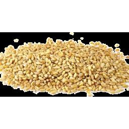 Photo of Barley - Pearl