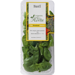 Photo of Tasman Bay Basil Punnet