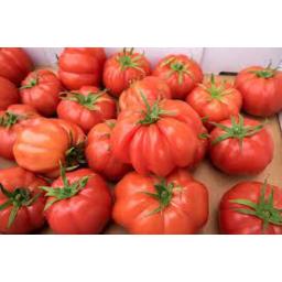 Photo of Tomato Oxheart