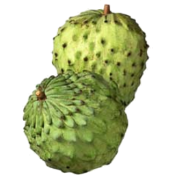 Photo of Custard Apple