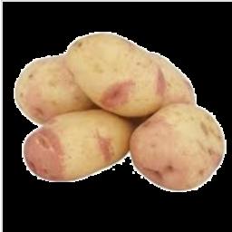 Photo of Potatoes King Edward Loose