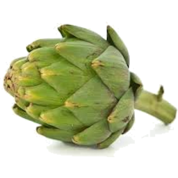 Photo of Artichoke