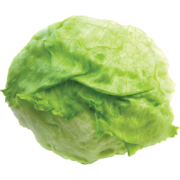 Photo of Lettuce Green