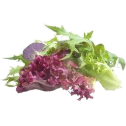 Photo of Lettuce Salad Mix Loose