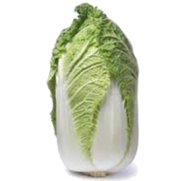 Photo of Wombok Chinese Cabbage