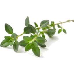 Photo of Thyme 10g