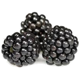 Photo of Blackberries P/P (Aus)