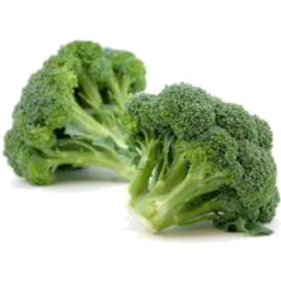 Photo of Broccoli Head
