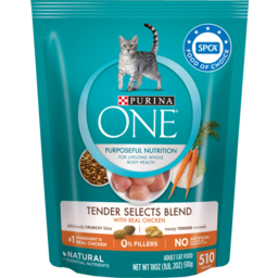 Photo of Purina One Dry Cat Food, Smartblend, Chicken & Turkey Flavour 510g