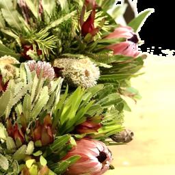 Photo of Peninsula Wild Flower Bunch