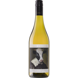 Photo of Noble Fellows Baron Betsy Pinot Gris 2019ml