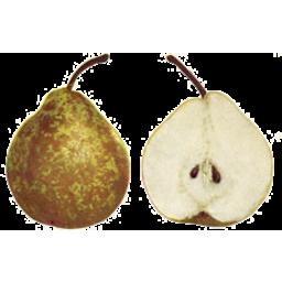 Photo of Pears Nellis