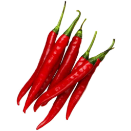 Photo of Chilli Red Long Loose