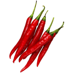 Photo of Red Chilli Capsicums