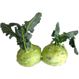 Photo of Kohlrabi